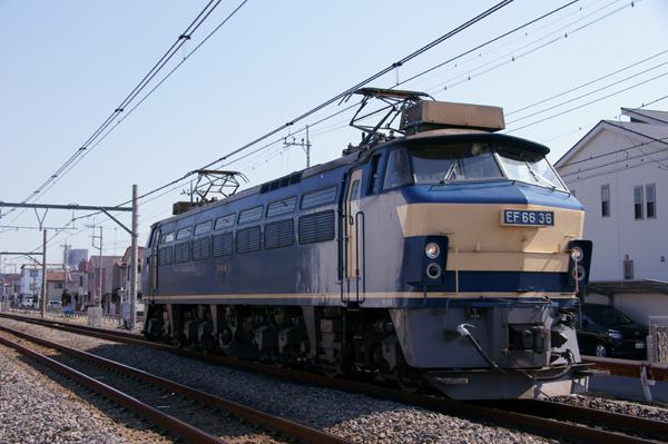 Dsc05010
