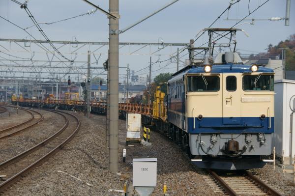 Dsc021911jpg
