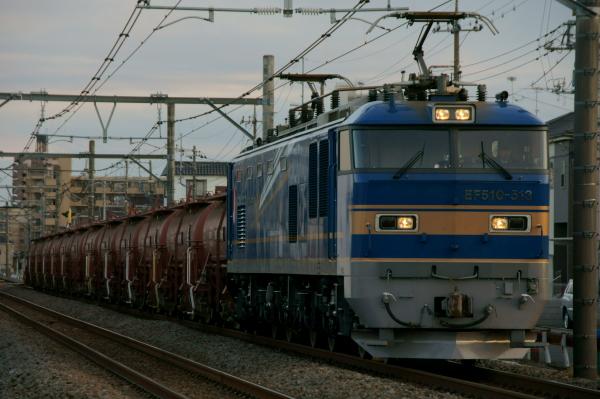 Dsc031061