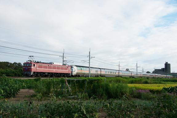 Dsc04421