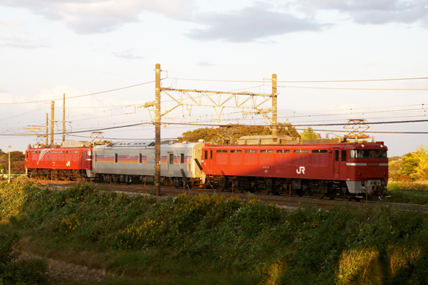 Dsc08952